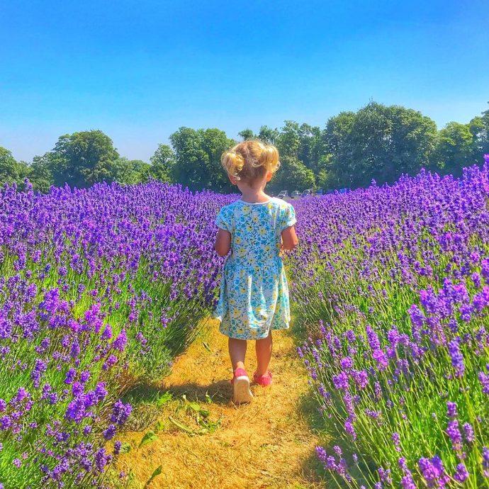 Wandermust Family - family travel instagram