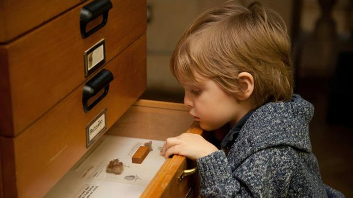 Bristol Museum - bristol activities for kids