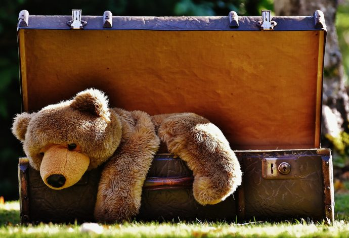 Bear and Suitcase - Travelling with Kids