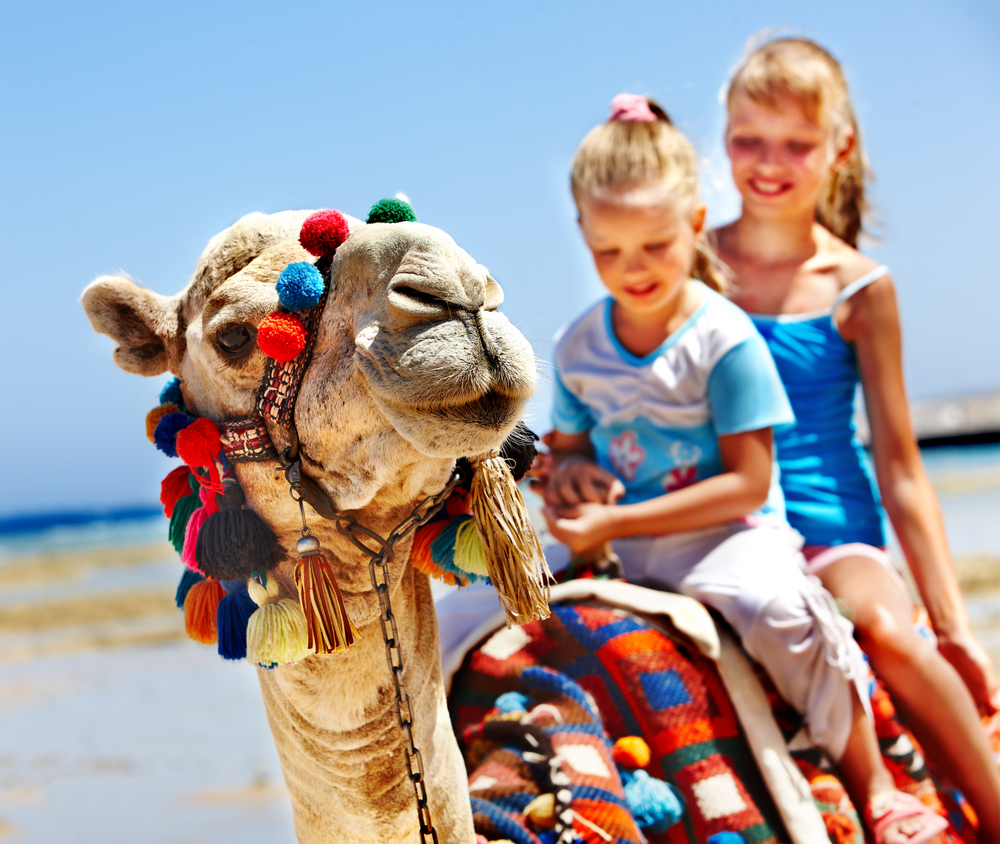 Family Friendly Hotels & Apartments in Gran Canaria