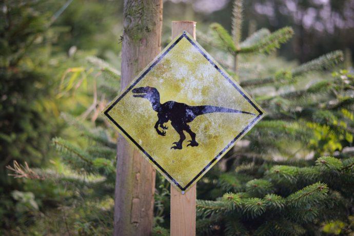 Raptor Safari