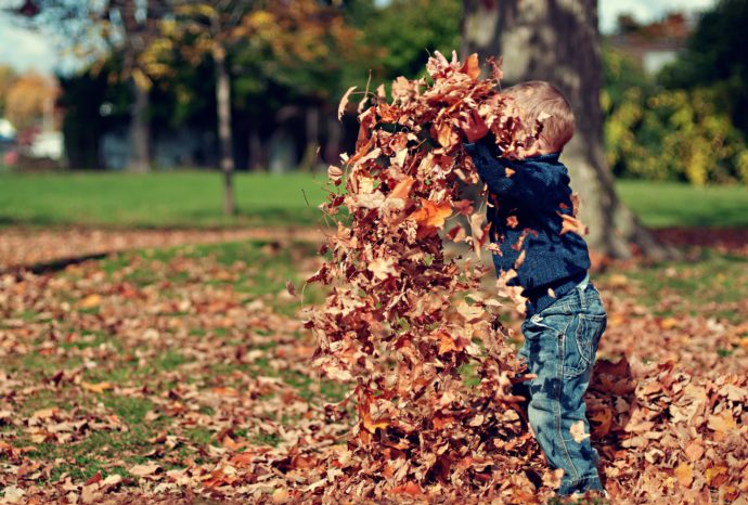 Boy Playing with Leaves - activities for toddlers at home