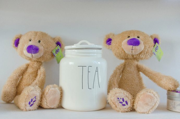 teddy bear's picnic - activities for toddlers at home